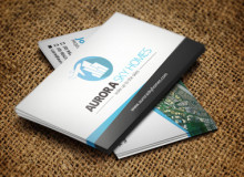 Business Card Design for Aurora Sky Homes